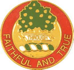 "Red, Gold and Green shield with ""Faithful and True"" written on it."