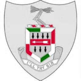Grey shield with red and green in the middle and I'll Try Sir written on it.