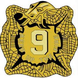 Gold Shield with a Snake and the number 9 on it.